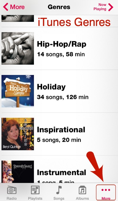iTunes Genres iPhone