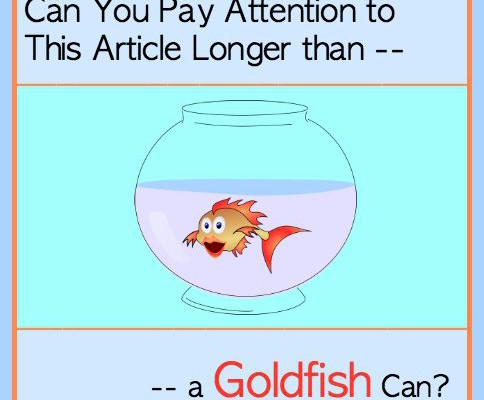 Can You Pay Attention to This Article Longer than a Goldfish Can?