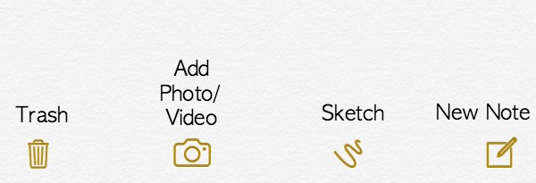 Apple Notes Options
