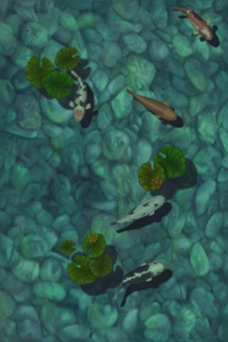 Koi Pond App