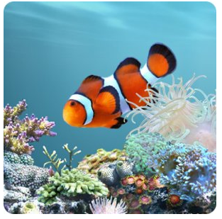 Aquarium Live Wallpaper Android