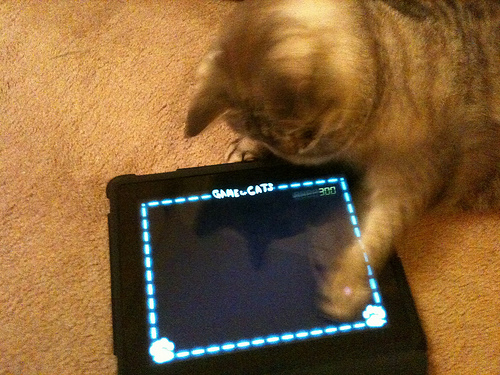 Cat games iPad