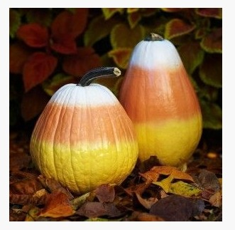 Pinterest Painted Pumpkin ideas