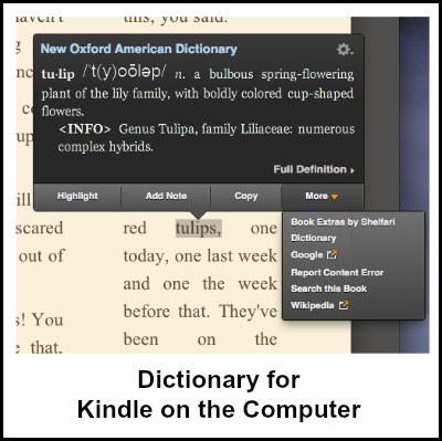 Features for Kindle on the Computer