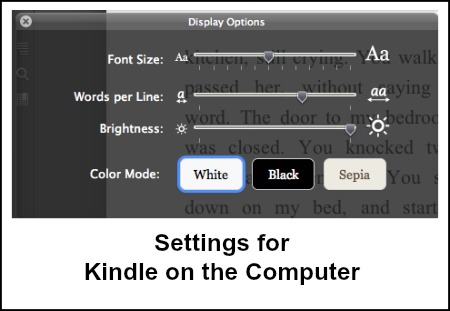 Font Size Kindle on the Computer