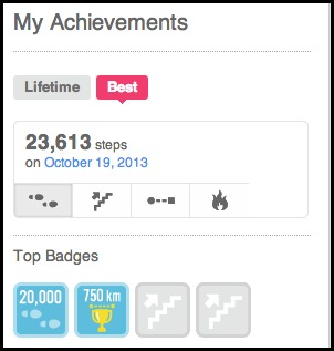FitBit Badges