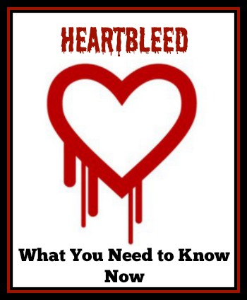 Heartbleed Internet Security