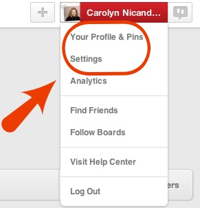 Pinterest Profile Information