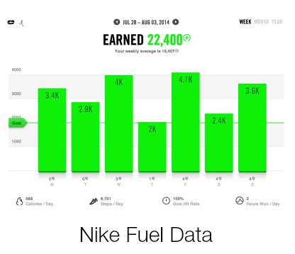 Nike FuelBand Data