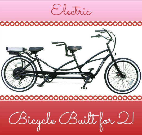 Valentine's Day Tandem Bicycle