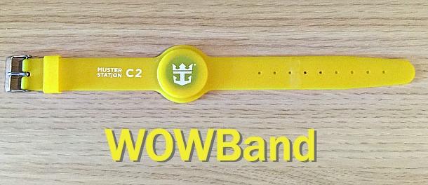 Quantum Wristbands