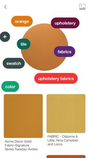 Pinterest Lens Color App