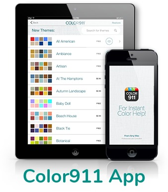 Color 911 App